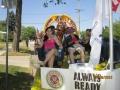 Lions pics 2012 066